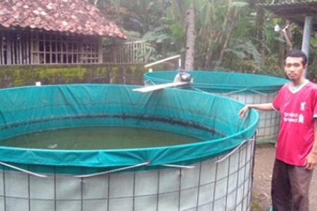 Inspiratif Dimasa Pandemi : Seorang Pemuda Sukses Pembudidaya Ikan Lele