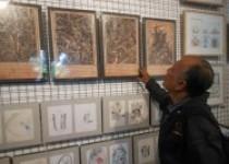 Telusuri Jejak Pendidikan Di Museum…