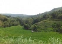 Inilah Lokasi Inti Desa Wisata…