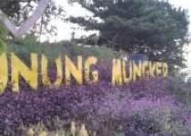 View Wisata Alam Gunung Mungker…