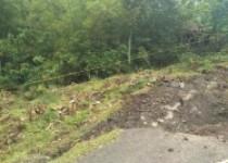 Kapan Jalan Ambles Di Dusun Jono, Tancep, DPU Memperbaiki ?