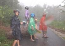 Hujan lebat batu dan tiang listrik…