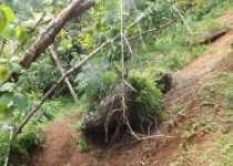 Obyek Wisata Alam Nawing Rawan…