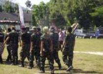 Pasukan doreng meriahkan kirab…