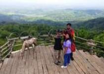 Obyek Wisata Watu Goyang Dlingo…