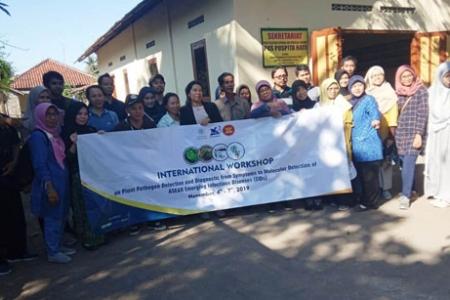 Wokshop Diaknosis Tanaman  Tim UGM Temukan Tanaman Cabe  Menguning Kena Penyakit