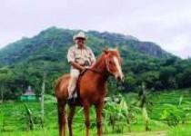 Haryo Camat Patuk Gunungkidul Menggandrungi…