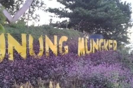 View Wisata Alam Gunung Mungker Dlingo Pas Tv News