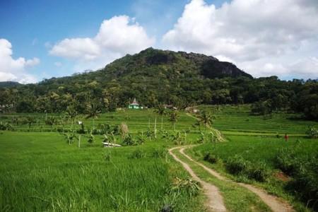 Kawasan Tawang Desa Ngoro-Oro Gunungkidul Spot Wisata Alamnya Kini Viral Dimedia