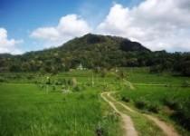 Kawasan Tawang Desa Ngoro-Oro Gunungkidul…