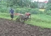 Gemburkan tanah pakai traktor selesaikan…