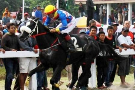 Kuda Pariwangi DIY Siap Bertarung DI Laga Tanding Kawilarang Memorial Cup Salatiga 2019