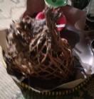 Libur Lebaran Itu Enaknya Berwisata Kuliner Ingkung di Guwosari Pajangan